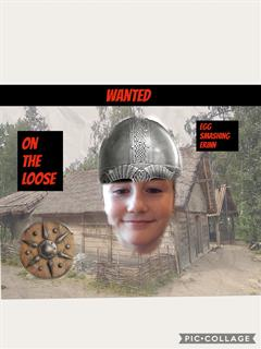 WANTED! Vikings on the loose!