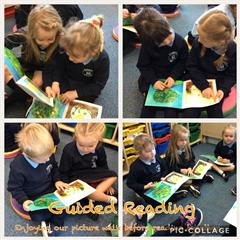 Guided Reading in Primary One