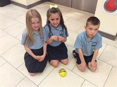 P3kp work with Beebots