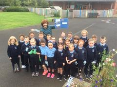 Harvesting the Potatoes Sown in Primary 2