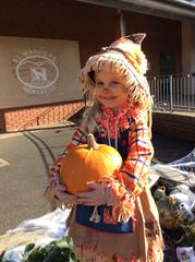 Our Very Own Pumpkin Patch!!